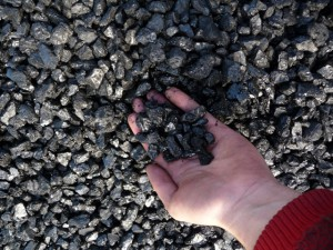 Anthracite-Beans-Size